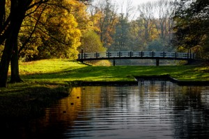 Amsterdamse Bos Bridge in Evening Glow